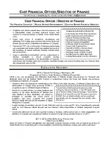 Chief Financial Officer . Director Of Finance Resume Sample